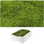 1 kist plaatmos ca. 2,00-2,50 kg gestoffeerde mos natuurgroen