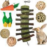 Konijn Hamster kauwspeelgoed, 8PCS kleine dierlijke hamster kauwspeelgoed, Natuurlijke houten kauwspeelgoed voor hamster, Bunny kauwspeelgoed voor tanden, Hamster kauwspeelgoed natuurlijke voor cavia's Hamster Ratten Chinchilla's